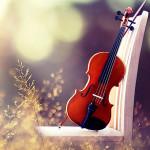 violin_cln36u36